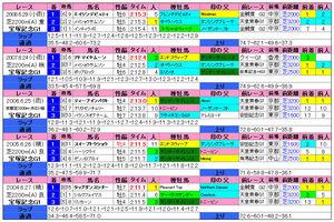 宝塚記念(過去成績)2009