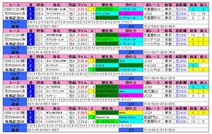 有馬記念(過去成績)2009