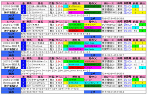 神戸新聞杯(過去成績)2011