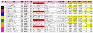 中日新聞杯(枠順)2010