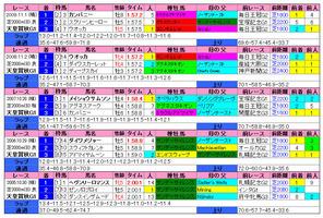 天皇賞(秋)(過去成績)2010