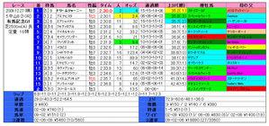 有馬記念(結果)2009