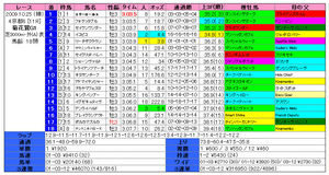 菊花賞(結果)2009