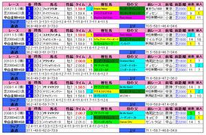 中山金杯(過去成績)2013