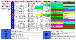 新潟大賞典(結果)2009