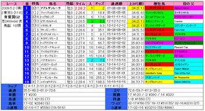 青葉賞(結果)2009