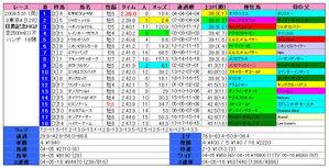 目黒記念(結果)2009