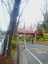 133e9962.jpg