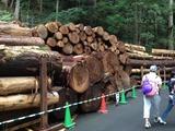和歌山の旅18