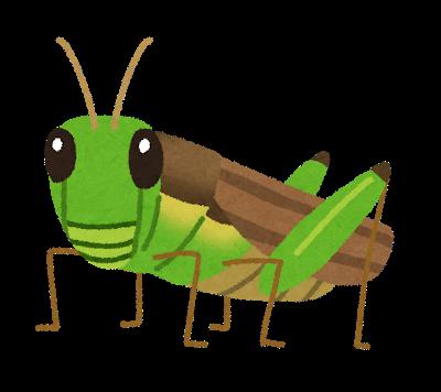 bug_inago