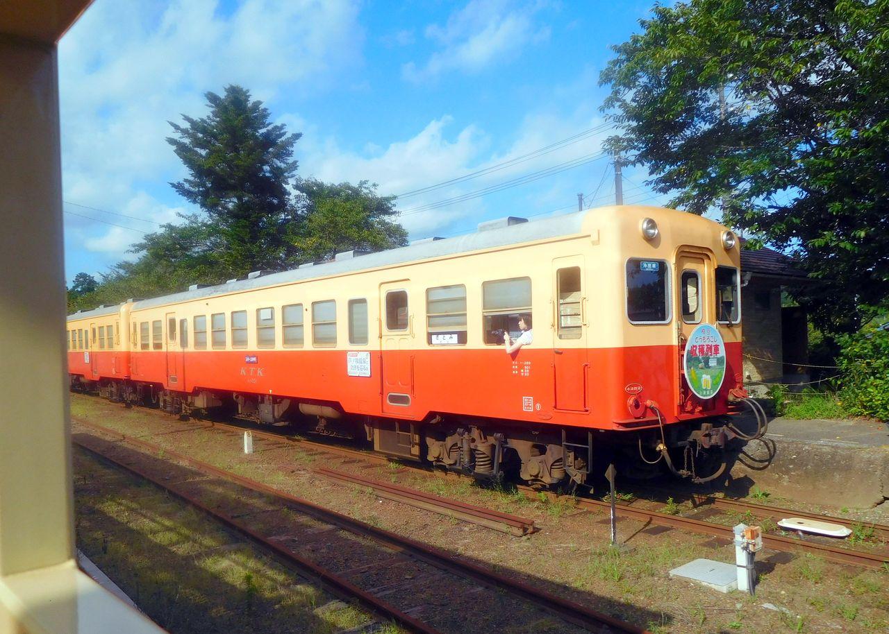 DSCN6252