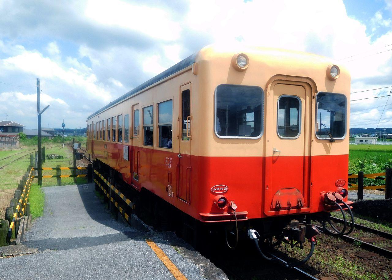 DSCN6192