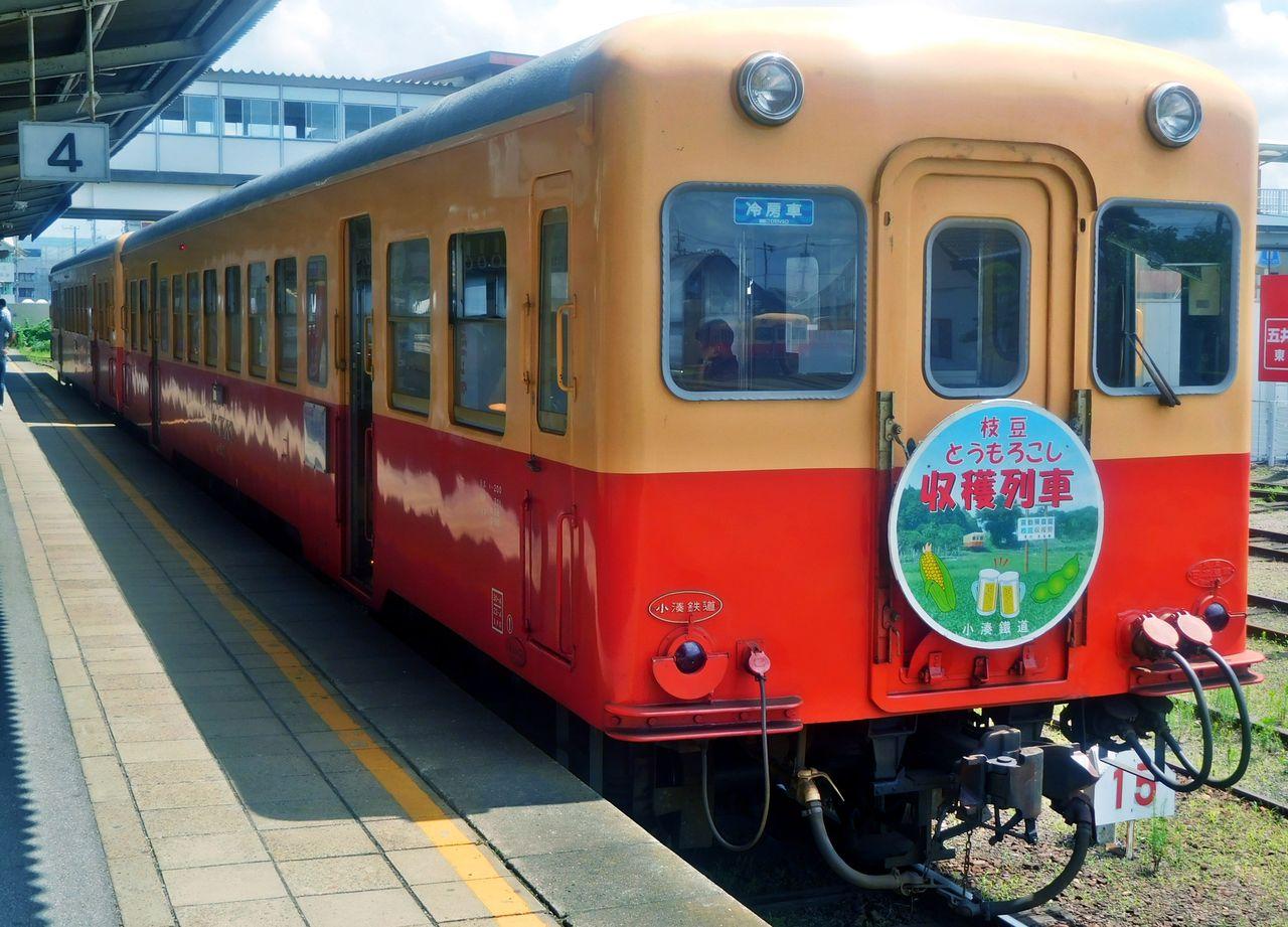 DSCN6190