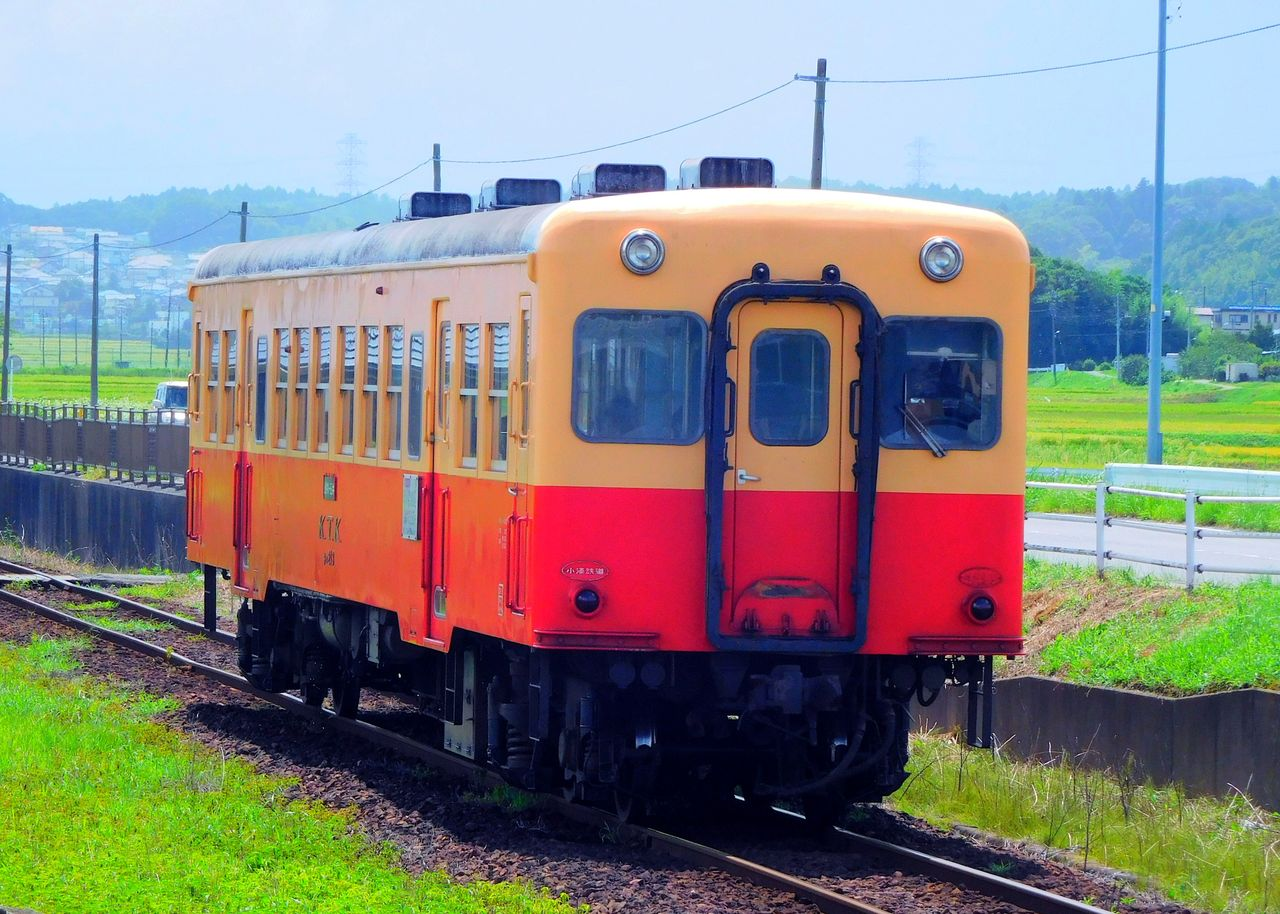 DSCN6509