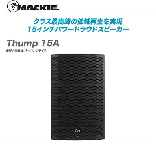 Thump_15A-top