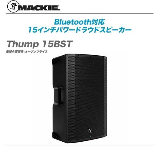 Thump_15BST-top