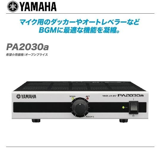 PA2030a-top