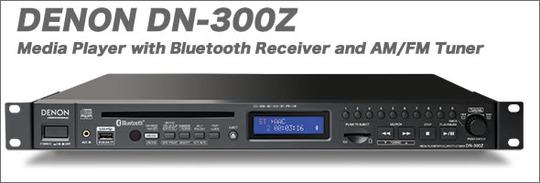 DN-300