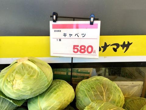 ホクト「冬の野菜高騰でキノコがすごく売れました」