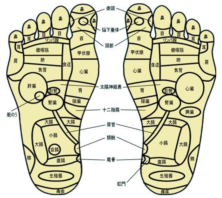 足ツボマッサージをやっていると、外人さんのお客様が来ます。 台湾式は、いわゆる痛い系で、ヨーロッパ式は、ソフトなイメージです。
