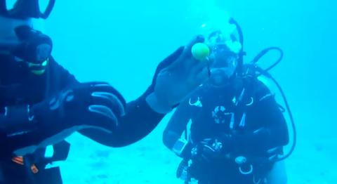 Deep-Diver-egg-trick_1