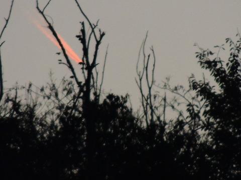 林の向こうに落ちていく謎の飛翔体
