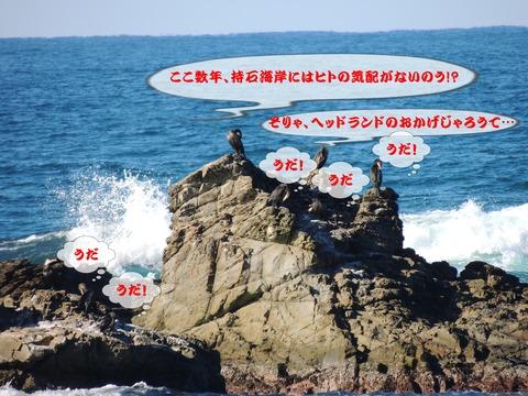 益田市 風景 持石海岸と7羽の鵜の妄想話