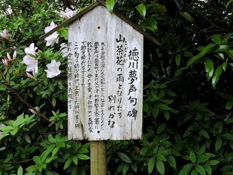 徳川夢声 津和野 山茶花句碑 案内板