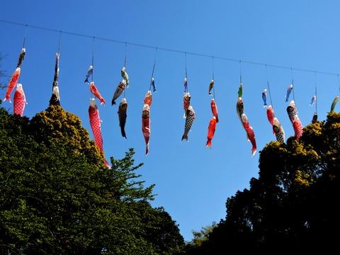 島根県立万葉公園の「進撃のこいのぼり」の風景(益田市高津)
