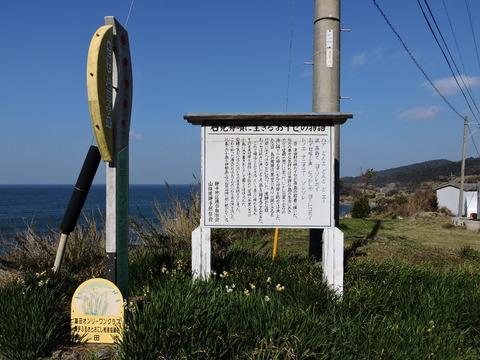 石見舟歌に生きるおイセの物語の看板