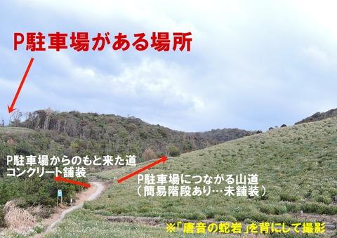 「唐音水仙公園」道(益田市鎌手地区):2015年2月8