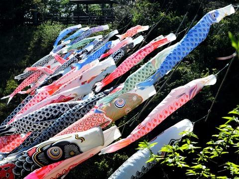 島根県立万葉公園の「進撃のこいのぼり」の風景(四季のもりより)