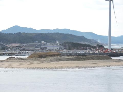 益田市 高津川河口の鳥たちの風景