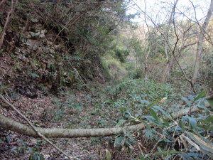 丸山銅山跡への道