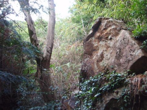 聖なる岩と筆柿