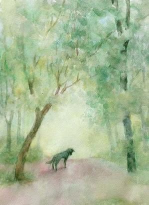244寂しい犬-1