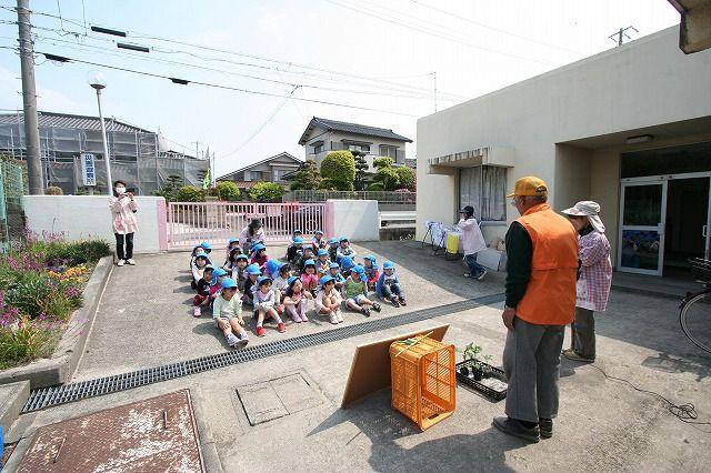 吉浜北部保育園 『夏野菜の苗植えました』の画像