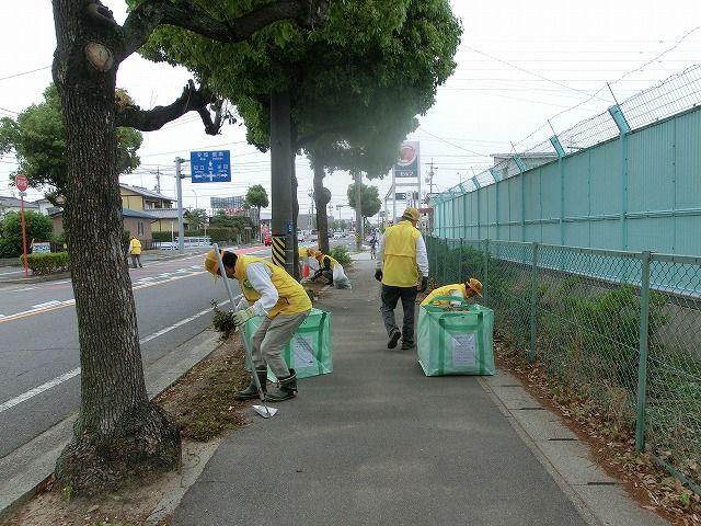 環境グループ『吉浜棚尾線草取り活動』報告の画像