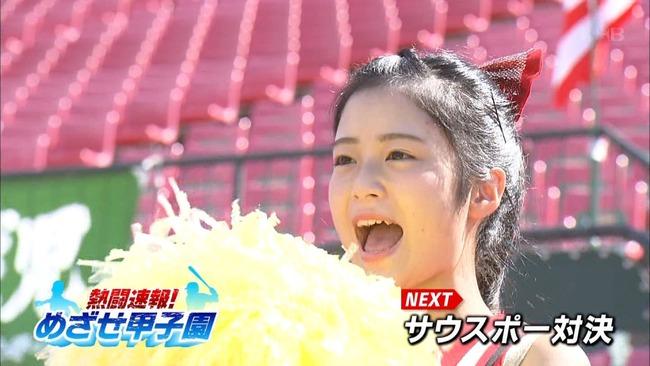 【gif画像あり】高校野球のチアガールJKの中でこの夏一番可愛い女の子