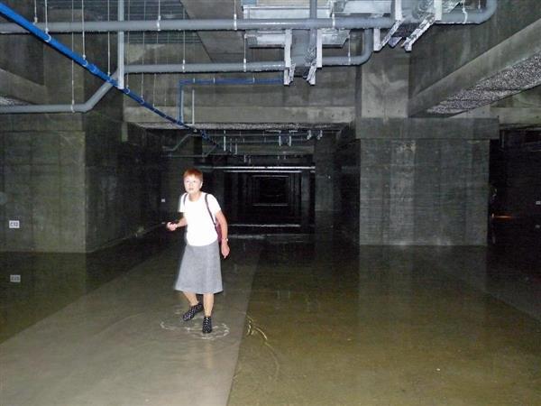 【築地移転】豊洲市場の地下空間から採取された自らヒ素検出!! 2ch「終わったな  豊洲は白紙撤回  誰の首が飛ぶのかね」