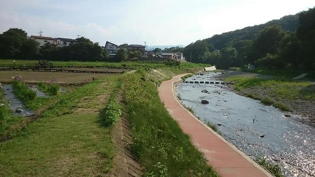 【怪死】埼玉県東松山市都幾川で顔と右腕、左手首以外が砂利に埋まった死体が発見される