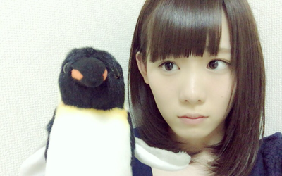ペンギン (1)