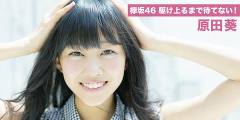 keyaki46_64_main_img