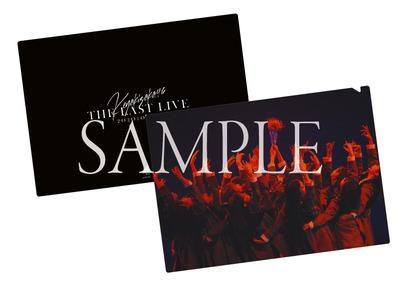 K46_LAST-LIVE_sample-Lammtarra
