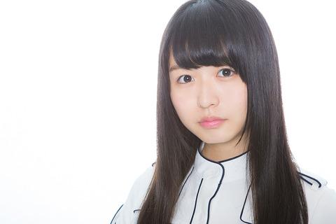 pug_keyaki_8435