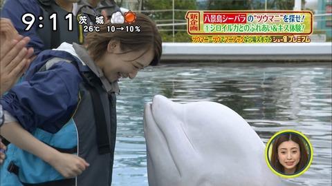 【元乃木坂46】生駒里奈さん、デートスポットの八景島シーパラで人目も気にせず堂々とキスしてた…