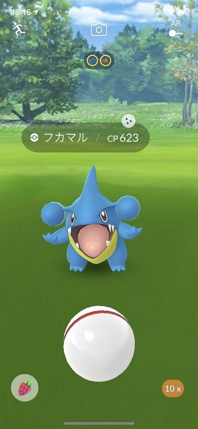 違い 色 ポケモン フカマル go