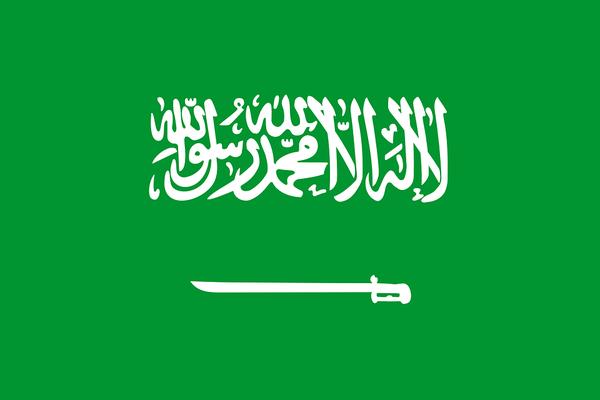 """【ヒェッ…】『サウジアラビア』の""""女性の権利""""で打線組んだ"""
