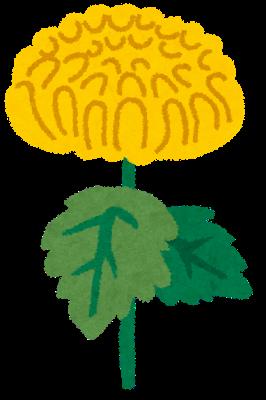 葬儀 木村 花
