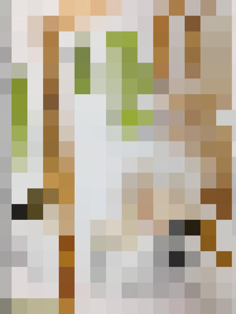 【画像】奈良時代の身分証明システムが面白い